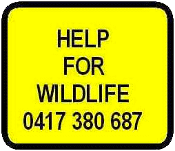 help for wildlife
